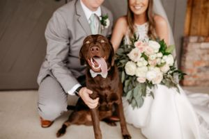 Chụp ảnh cưới cùng thú cưng - xu hướng mới lạ của giới trẻ - Blog Marry