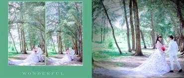 Album Cưới Ngoại Cảnh Cần Thơ - Thiên Ngân Studio - Hình 3