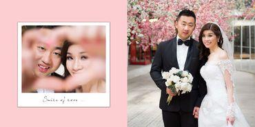 Ảnh cưới chụp ở The Vow 3 - Stephen Lee Makeup Studio - Hình 7