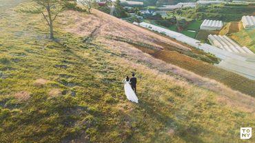 Da Lat Package (Đà Lạt / Nha Trang / Tỉnh thành khác) - Tony Wedding - Hình 11