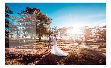 Chụp Album Cưới Đà Lạt chỉ với 12.500.000đ - Trương Tịnh Wedding - Hình 11