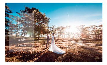 Ảnh cưới đẹp tại Đà Lạt - Trương Tịnh Wedding - Hình 9
