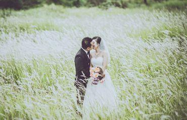 Chụp ảnh ngoại cảnh Đà Nẵng - T Wedding-Chụp Ảnh Cưới Đà Nẵng - Hình 2