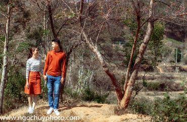 Chụp hình cưới ngoại cảnh ở Đà Lạt - Studio Ngọc Huy - Hình 6