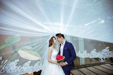 Trọn gói album cưới phim trường Endee - Hệ thống cửa hàng dịch vụ ngày cưới ALEN - Hình 4