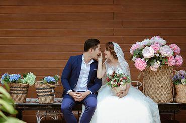 Trọn gói album cưới phim trường Endee - Hệ thống cửa hàng dịch vụ ngày cưới ALEN - Hình 6
