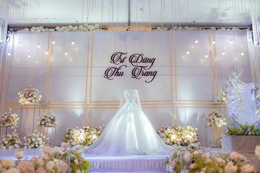 5. TRÍ DŨNG - THU TRANG - Trung tâm tổ chức sự kiện & tiệc cưới CTM Palace - Hình 5
