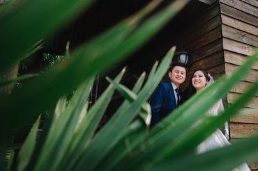 Pre-wedding Thành Tín & Thanh Nhã - HUGO WEDDING - Hình 2