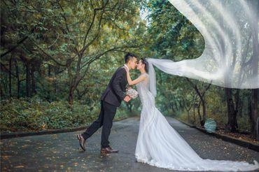 Cặp đôi chụp ảnh tại sầm sơn thanh hóa - Mr ' Trung Trần Wedding - Hình 4