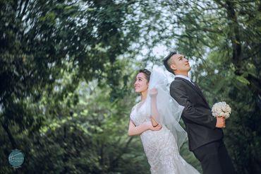 Cặp đôi chụp ảnh tại sầm sơn thanh hóa - Mr ' Trung Trần Wedding - Hình 5