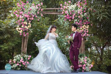 Cặp đôi chụp ảnh tại sầm sơn thanh hóa - Mr ' Trung Trần Wedding - Hình 9