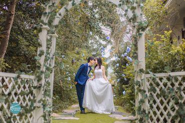 Cặp đôi chụp ảnh tại sầm sơn thanh hóa - Mr ' Trung Trần Wedding - Hình 3