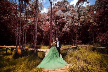 album ảnh cưới đẹp mê ly tại đà lạt - Ảnh Cưới Đà Lạt - K studio - Hình 3