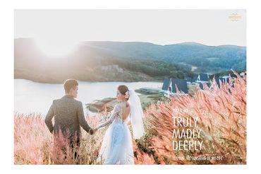 Chụp Album Cưới Đà Lạt chỉ với 12.500.000đ - Trương Tịnh Wedding - Hình 1