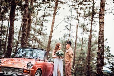 Chụp Album Cưới Đà Lạt chỉ với 12.500.000đ - Trương Tịnh Wedding - Hình 20