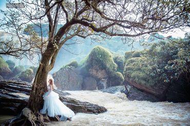 Trọn gói chụp album cưới Bảo Lộc - Huynh Lee Studio - Hình 32