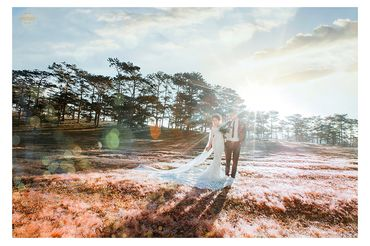Ảnh cưới đẹp tại Đà Lạt - Trương Tịnh Wedding - Hình 31
