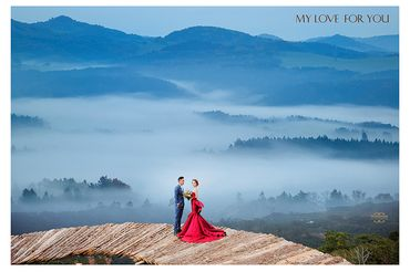Ảnh cưới đẹp tại Đà Lạt - Trương Tịnh Wedding - Hình 16