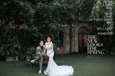 Ảnh Cưới Phim Trường - Sài Gòn Đêm - Trương Tịnh Wedding - Hình 3