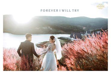 Ảnh cưới đẹp tại Đà Lạt - Trương Tịnh Wedding - Hình 5