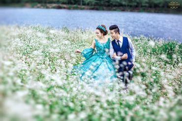 Ảnh cưới đẹp tại Đà Lạt - Trương Tịnh Wedding - Hình 6