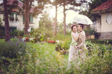 Ảnh cưới đẹp tại Đà Lạt - Trương Tịnh Wedding - Hình 22