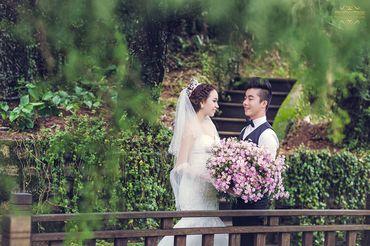 Ảnh cưới đẹp tại Đà Lạt - Trương Tịnh Wedding - Hình 20