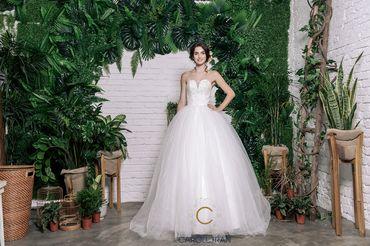 Váy chân bồng lưới thân trên đính hạt - Caroll Trần Design - Hình 1