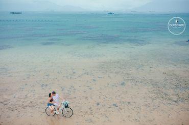 Đà Lạt, Nha Trang - [308]Photo - Hình 21
