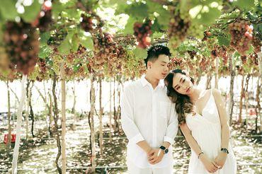Hồ Cốc, Long Hải, Vũng Tàu - Nupakachi Wedding & Events - Hình 10