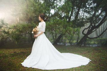 Album cưới lãng mạn tại Đà Lạt Tháng 12 khuyến mãi còn 10,800,000 - Jolie Holie - Hình 20