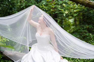 Album cưới lãng mạn tại Đà Lạt Tháng 12 khuyến mãi còn 10,800,000 - Jolie Holie - Hình 34