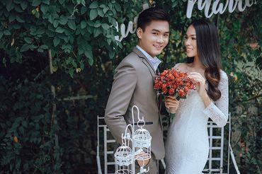 Trọn gói album cưới phim trường Alibaba - Hệ thống cửa hàng dịch vụ ngày cưới ALEN - Hình 5