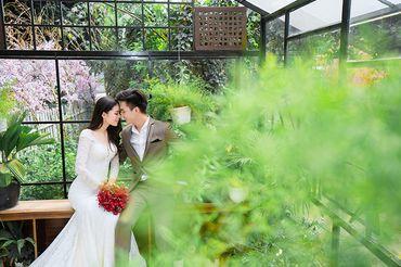 Trọn gói album cưới phim trường Alibaba - Hệ thống cửa hàng dịch vụ ngày cưới ALEN - Hình 19