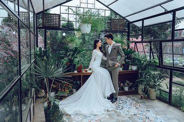Trọn gói album cưới phim trường Alibaba - Hệ thống cửa hàng dịch vụ ngày cưới ALEN - Hình 1