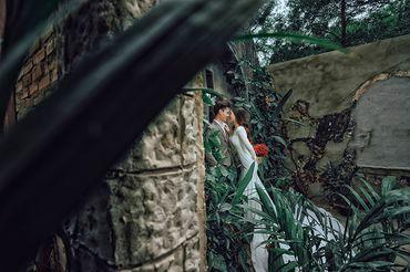 Trọn gói album cưới phim trường Alibaba - Hệ thống cửa hàng dịch vụ ngày cưới ALEN - Hình 17