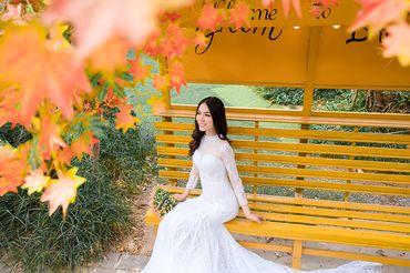 Trọn gói album cưới phim trường Alibaba - Hệ thống cửa hàng dịch vụ ngày cưới ALEN - Hình 11