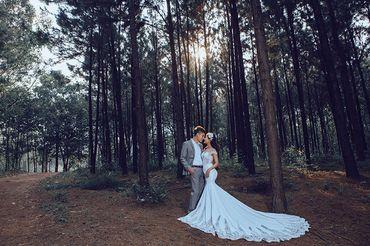 Trọn gói album cưới Đà Lạt thu Nhỏ tại Đồng Nai - Hệ thống cửa hàng dịch vụ ngày cưới ALEN - Hình 15