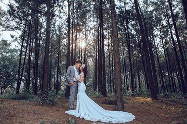Trọn gói album cưới Đà Lạt thu Nhỏ tại Đồng Nai - Hệ thống cửa hàng dịch vụ ngày cưới ALEN - Hình 14