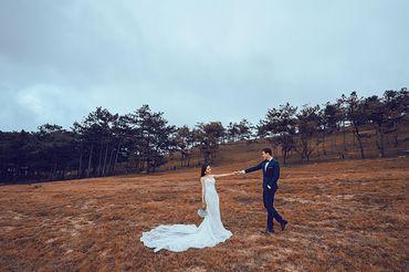 Trọn gói album cưới ngoại cảnh Đà Lạt - Hệ thống cửa hàng dịch vụ ngày cưới ALEN - Hình 16