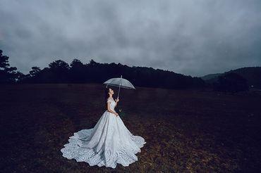 Trọn gói album cưới ngoại cảnh Đà Lạt - Hệ thống cửa hàng dịch vụ ngày cưới ALEN - Hình 3