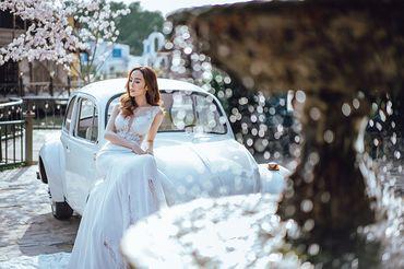 Trọn gói album cưới phim trường L'amour - Hệ thống cửa hàng dịch vụ ngày cưới ALEN - Hình 19