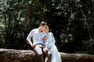 Trọn gói album cưới ngoại cảnh Phú Quốc - Hệ thống cửa hàng dịch vụ ngày cưới ALEN - Hình 6
