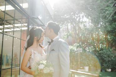 Sai Gon Package (Simple Concept / Phim Trường / Ngoại Cảnh SG) - Tony Wedding - Hình 4
