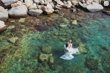 Sea Package (Hồ Cốc - Vũng Tàu / Phan Thiết - Cocobeach Camp / Vĩnh Hy) - Tony Wedding - Hình 14