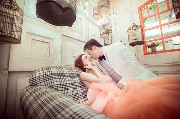 Gói Phim Trường - KK Sophie Wedding Studio - Hình 12