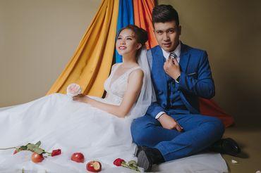Sai Gon Package (Simple Concept / Phim Trường / Ngoại Cảnh SG) - Tony Wedding - Hình 14