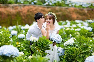 Bảng giá chụp album cưới Đà Lạt - Ảnh viện áo cưới Mailisa - Hình 1