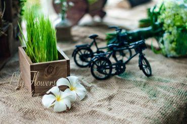 Đám cưới Vintage tại Thảo Điền Village - Lily Flowers & Wedding - Hình 6
