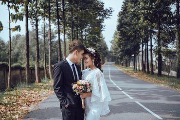 Trọn gói album cưới Đà Lạt thu Nhỏ tại Đồng Nai - Hệ thống cửa hàng dịch vụ ngày cưới ALEN - Hình 18